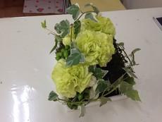 苔と花のアレンジメント