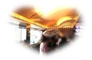 8月28日 優しい包容力のあるハイステータス男性限定婚活パーティー ホテルニューオータニ